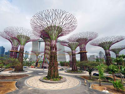 Описание и снимки на пристанище Сингапур, Сингапур от круизен маршрут