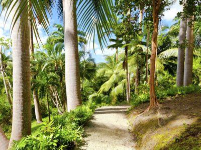 Описание и снимки на пристанище Бриджтаун, Барбадос от круизен маршрут