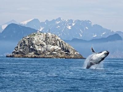 Описание и снимки на пристанище Вътрешен проход (Аляска), САЩ от круизен маршрут