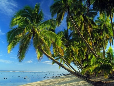 Описание и снимки на пристанище Аутаки, Острови Кук от круизен маршрут