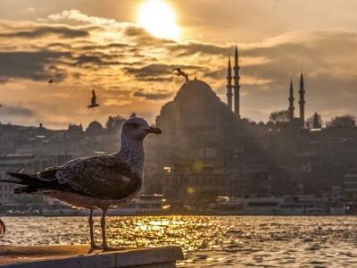 Описание и снимки на пристанище Босфор, Турция от круизен маршрут