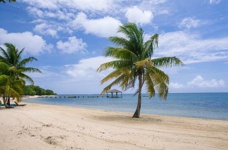 7 дни Карибска мечта