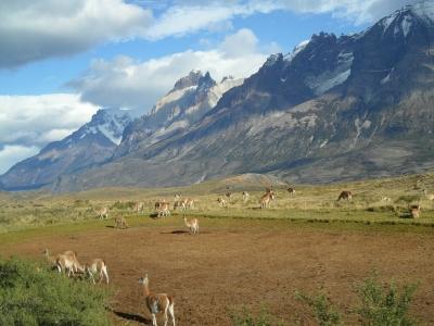 Описание и снимки на пристанище Арика (Чили), Чили от круизен маршрут