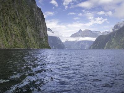 Описание и снимки на пристанище Милфорд Саунд (Нова Зеландия), Нова Зеландия от круизен маршрут
