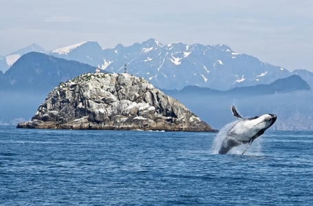 7 дни Непознатите съкровища на Аляска