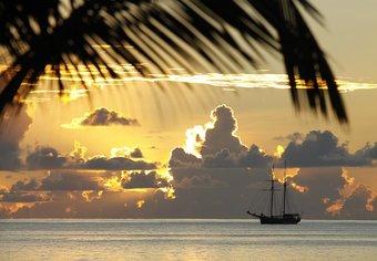 Cruise in Africa