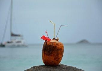 Coconut Africa Cruise