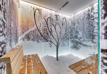 SPA snow room
